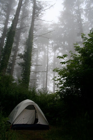 Camping in the Redwood forest, Oregon, 2009