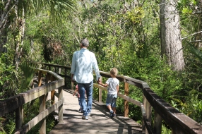 Hand in hand through the Everglades national park