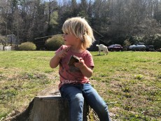 Olivia is making imaginary cakes in the garden in Boone
