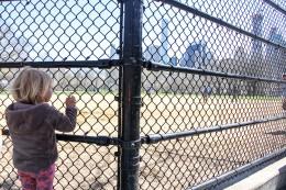 Baseball in Central Park