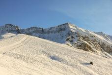 Elsigen Alp, Berner Oberland